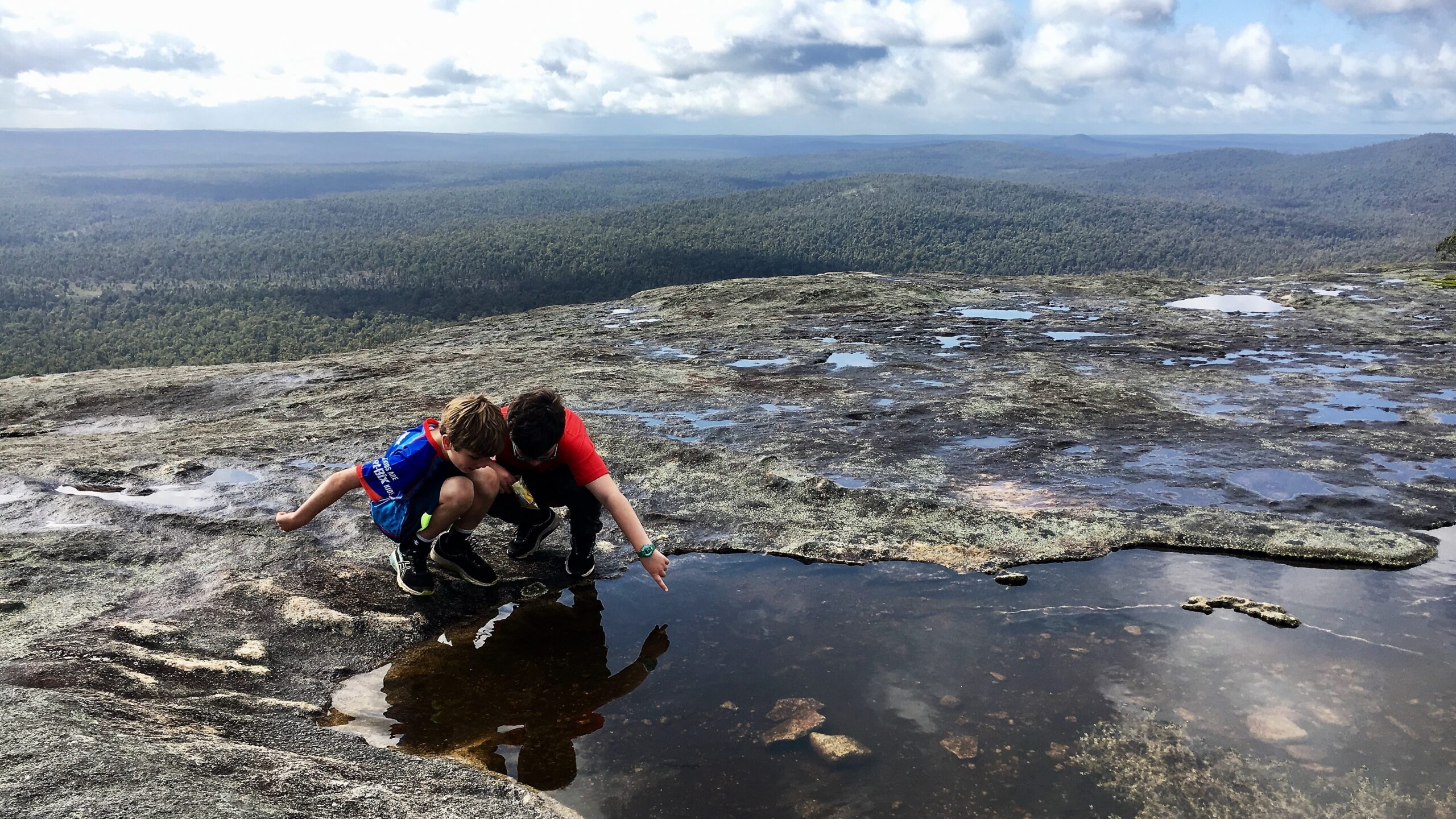 two young boys discovering living creatures in the rock pool