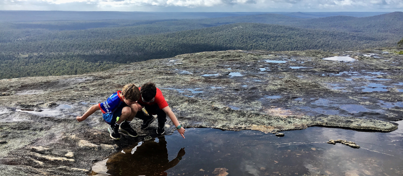 Two young boys discovering life in a puddle on Mt Cuthbert during a kid hike on Bibbulmun Track.